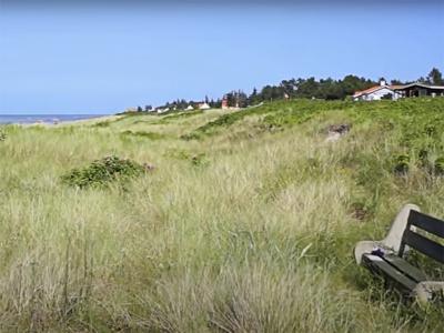 Stranden med sommerhuse bag - 521
