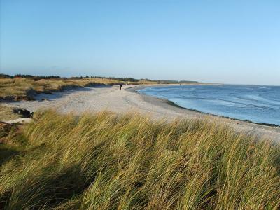 Hous nordlige strand - 597