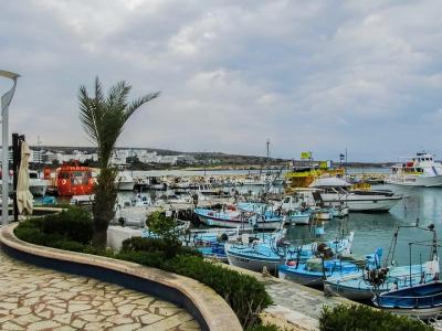 Ayia Napa havn, Cypern - 610