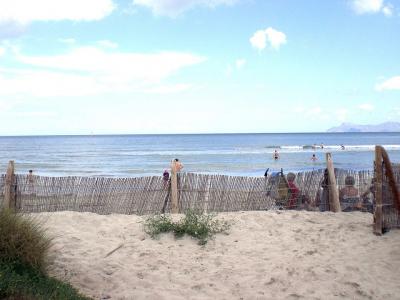 På stranden i Alcudia - 946