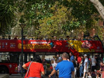 Sightseeing i Palma de Mallorca - 972
