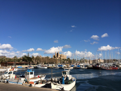 Palma de Mallorca - 981